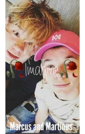 🥀Imagine🥀 Marcus and Martinus  by c_moi_chloe
