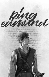 Las Crónicas De Narnia y Tu (Edmund y tu) cover