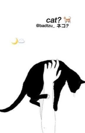 cat? rensung ♡ [english] by badtzu