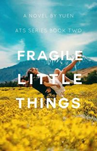 Fragile Little Things cover