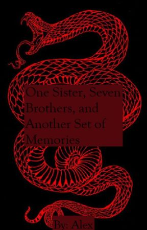 One Sister, Seven Brothers, and Another Set of Memories {BTS} by AlexMcSkittles