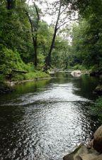 Goddess of the Creek by SilverWolf_15