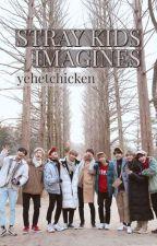 Stray Kids IMAGINES by yehetchicken