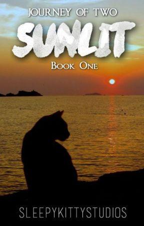 Journey Of Two, Book One // SUNLIT by sleepykittystudios