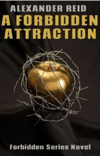 A Forbidden Attraction cover