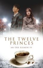 THE TWELVE PRINCES (Xiumin x Reader ff) by diablomanthe