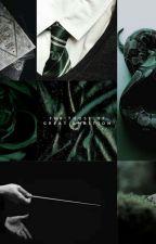 Heir of Slytherin (Draco Malfoy X Oc) by infamous_spark