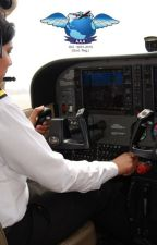 Well Known Pilot Training in India Airwing Aviation Academy by airwingaviation
