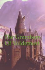 The Grandson of Voldemort -complete  by ILikeRunning2