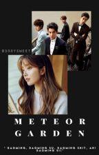 ♡ Meteor Garden ♡ by b3rrysweet