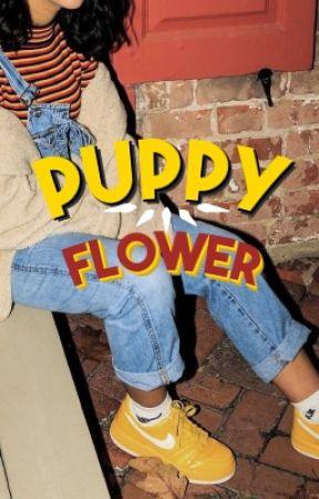 Puppy Flower by cadburies