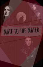 Mate to the Mated by theshinybeetle
