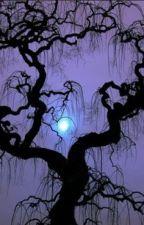12 chòm sao và thế giới phù thủy by nguyenquyquynhhoa