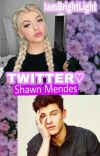 Twitter● Shawn Mendes cover