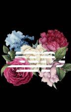 Flower Road || A BIGBANG FanFiction (ON HIATUS) by aviiiixxvi