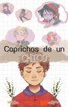 Caprichos De Un Chico (Tyde) cover