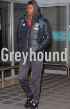 Greyhound [Marcus Rashford] by IndigoCorner