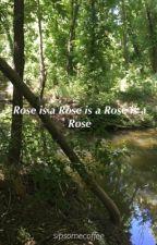 Rose is a Rose is a Rose is a Rose by sipsomecoffee