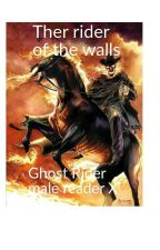 Ghost Rider Reader X Attack on Titans(+18) by combatmonster44