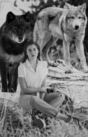 The wolf in you Lauren/you by Lolo91202