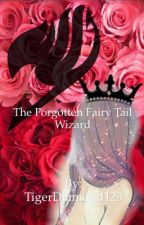 The Forgotten Fairy tail Wizard (Fairy Tail Male characters x OC) by TigerDiamond123