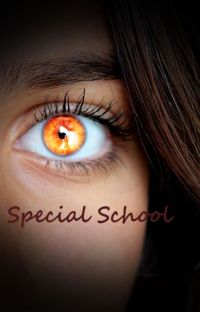 Special School [Finie] cover