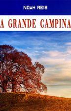 A Grande Colina by noahreis