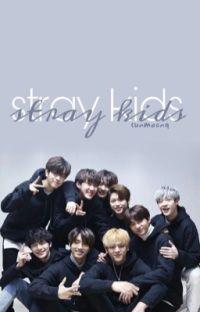 •STRAY KIDS GUÍA• {actualizado}  cover