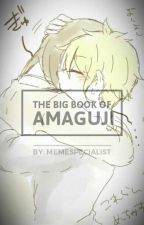 The Big Book Of Amaguji by MemeSpecialist
