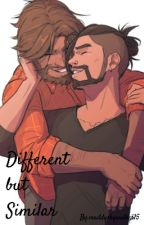 Different but Similar (McHanzo Fanfiction) by maddy_willow