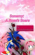 Sonamy: A Rose's Scars by SandyDandygUrl
