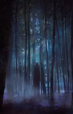 [POÈME] Errance nocturne by Ireyhn