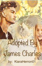 Adopted by James Charles   Ian Jeffrey by KiaraHerron01