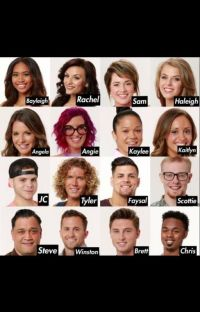 Big Brother 20 (Tyler Crispen x Reader)*discontinued* cover