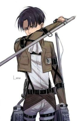 Two worlds AOT Levi x Reader