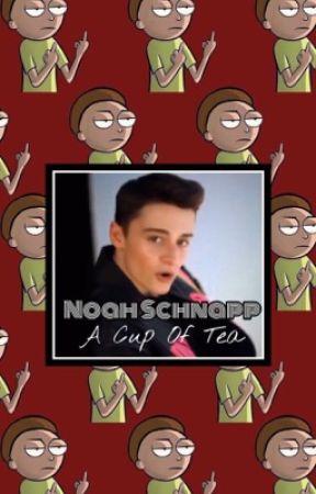 A Cup Of Tea | Noah Schnapp x reader by papidraco
