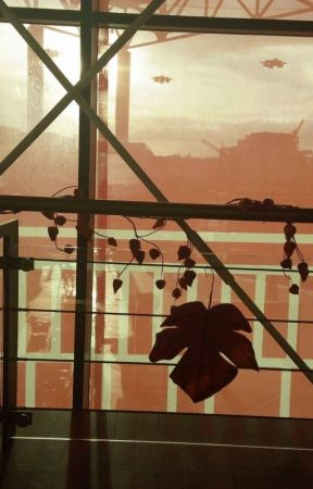 Printre scânduri de gard. Prin geamuri de termopan. by TheWill1999
