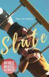 Slate   ✓ cover