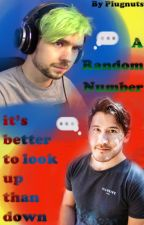 A Random Number (Septiplier) !HOLD! by Plugnuts