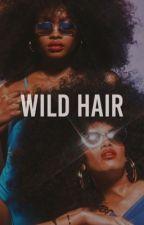 WILD HAIR by mangopealer