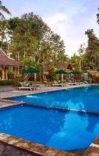 HOTEL INDAH DI DEKAT BUKIT!!!, Hotel Banyuwangi, Hotel Di Pinggri Sungai by MargoUtomoResort
