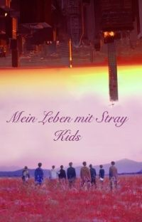 Mein Leben mit Stray Kids~ cover