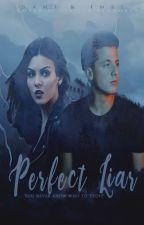 Perfect Liar by SamANDInsi