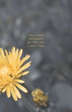 the flower boy by louistdind