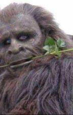 Bigfoot smut  by haleykailo18