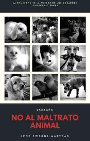 Campaña: No al maltrato animal [Kpop Awards Wattpad] by KpopAwardsOficial