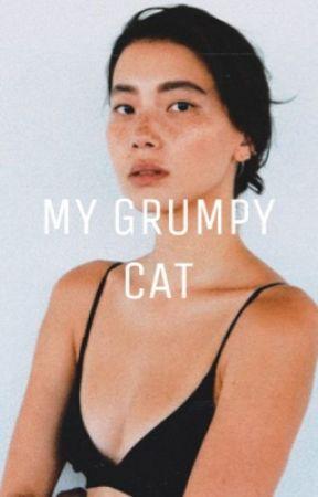My Grumpy Cat    قطي المتجهم by Noni_Foghi_16