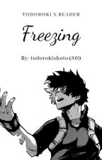 Freezing ↬ [Todoroki Shoto x Reader] by todorokishoto4869