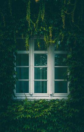 ~Karşı Pencere~ by Yagmur1917