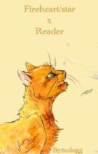 Fireheart/star x Reader by tudogg